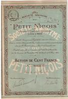 Action Ancienne - Sociétété Anonyme Du Petit Niçois - Titre De 1924 - France - Industrial
