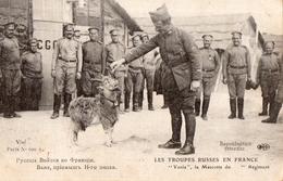 """RUSSIE - RUSSIA - MILITARIA - LES TROUPES RUSSES EN FRANCE - """" Vania """", La Mascotte Du ...me Régiment ( Chèvre ) - Russie"""