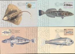 AAT 2006 Fish In The AAT 4xMaxicards - Australian Antarctic Territory (AAT)