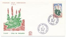 TAAF - Enveloppe FDC - 45F Chou Des Kerguelen - Archipel Des Kerguelen 30/12/1972 - FDC