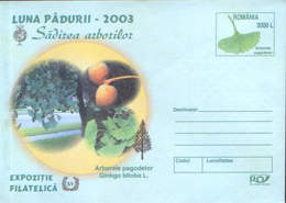 Romania - Stationery Cover 2003 Unused - Pharmacy - The Medicinal Plant, The Tree Of The Pagoda (Ginkgo Biloba) - Medicinal Plants
