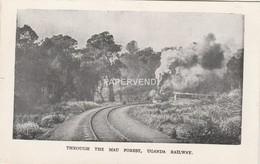 Uganda  Railway Train Passing Through Mau Forest   U185 - Uganda