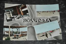 3428  Rosapineta - 1963 - Non Classificati