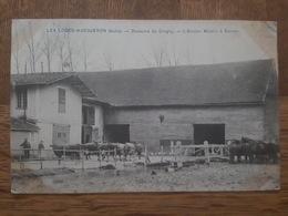 Les Loges Margueron - Domaine De Crogny - L'Ancien Moulin à Ecorse - Vaches, Chevaux - France