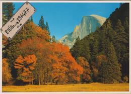 Yosemite - Cpm / Vue. - Yosemite