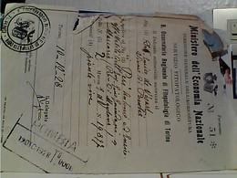 FITOPATOLOGIA OSSERVATORIO DI TORINO 1928 GV3872 - Italia