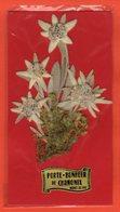 PORTE-BONHEUR DE CHAMONIX MONT-BLANC - VÉRITABLE EDELWEISS - Autres Collections