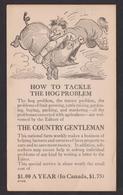 USA-1917 Entier PUB Cochon (5G25781) DC0069 - Entiers Postaux