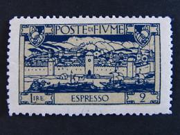 """ITALIA Occupazioni Fiume Espressi -1923- """"San Vito"""" C. 60 MH* (descrizione) - Fiume"""