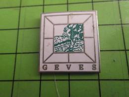 918A Pin's Pins / Beau Et Rare : Thème MARQUES / GEVES  PAYSAGE AVEC ARBRE - Merken
