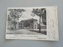 CARTOLINA VITERBO . INGRESSO AL GIARDINO PUBBLICO - Viterbo