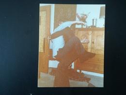 PAPY SUR UN MANÈGE FOIRE À L ATOMIUM PLAGE MER DANSE ENDIABLÉE 20 PHOTOS ORIGINALES EN COULEURS FAMILLE BELGIQUE  1970 - Album & Collezioni