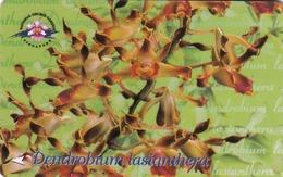 SINGAPORE - Dendrobium Lasianthera, CN : 154SIGA, Used - Singapour