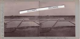 LE POULINGUEN 1898 - Photo Stéréo Originale Des Marais Salants ( Loire Atlantique ) - Orte