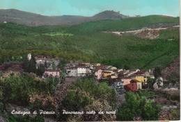 CASTAGNO Di PITECCIO  Panorama Vista Da Nord - Pistoia