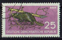 DDR 1959 // Mi. 691 O (M.028..564) - Nager