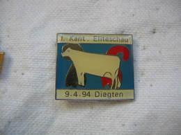 Pin's D'une Vache, Concours Elite De DIEGTEN En Suisse Le 09-04-94 - Animals