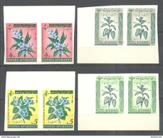 AFGHANISTAN STAMPS  1962 FLOWERS IMPERF PAIR MNH - Afghanistan