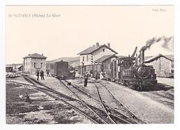 CPM TRAIN VOIR DOS 69 Monsols Ligne Villefranche Sur Saône Beaujeu Et Monsols Locomotive Vapeur Chien - Villefranche-sur-Saone