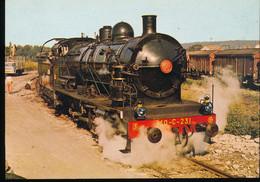 Ajecta N° 15 -- Depot De Longueville -- 140 C 231 De 1916 - Trains