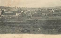 BORNEL - Vue Générale,passage D'un Train De Marchandises.(cachets Spécimen Au Dos De La Carte) - Sonstige Gemeinden
