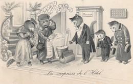 Chats : Chats Humanisés : Les Surprises De L'hotel ( Carte Gaufrée ) Précurseur - Katzen