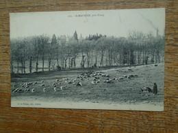 """St-maurice , Près De Crocq """""""" Carte Animée Bergère Et Ses Moutons """""""" - France"""