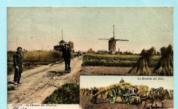 AALST - Le Chemin Des Moulins / La Rentrée Des Blés (gekleurd) - Aalst