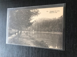 91 Orsay 1916  Bord Du Lac Pecheurs Promeneurs Dos Vert - Orsay