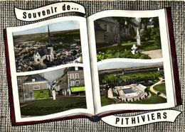1 Cpsm Souvenir De Pithiviers - Pithiviers