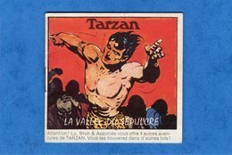 TARZAN LA VALLEE DU SEPULCRE  Mini Album Lu Brun & Associés - Objets Publicitaires
