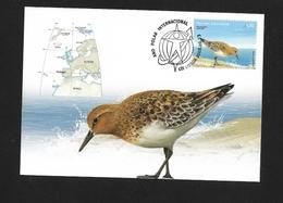 PORTOGALLO 2008  International Polar Year - Birds  El Correlimos Tridáctilo O Playerito Blanco (Calidris Alba) - Stamps