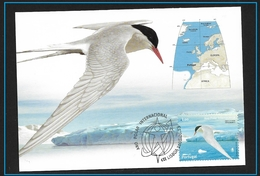 PORTOGALLO 2008  International Polar Year - Birds  ARTIC - Stamps