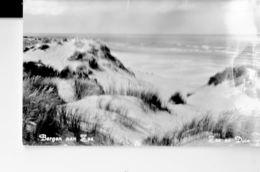 NETHERLANDS 1962 - VINTAGE POSTCARD BERGEN AAN ZEE ZEE EN DUIN SHINING SENT TO GERMANY  NR 262UITG K FOLGERS POST7138 - Sonstige