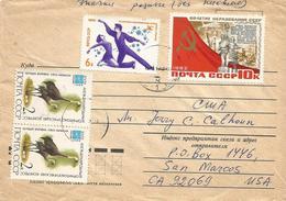 Ukraine 1982 Kiev USSR Hooded Crane Grus Monacha Iceskating Cover - Kranichvögel