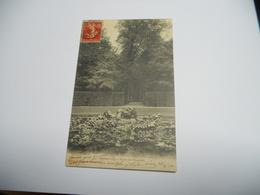 78 YVELINES CARTE ANCIENNE EN N/BL DE 1907 VERSAILLES BASSIN DE L'ENCELADE LETTRE EN ROUGE N°47 EDIT DU GRAND SAIN - Versailles (Château)