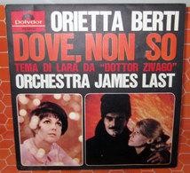 ORIETTA BERTI DOVE NON SO   AUCUN VINYLE - COVER -  NO VINYL - Accessori & Bustine