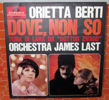 ORIETTA BERTI DOVE NON SO   AUCUN VINYLE - COVER -  NO VINYL - Accessoires, Pochettes & Cartons