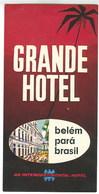 Brasil Brèsil Etiquette Valise Grande Hotel Belém Pará Brazil  Luggage Label - Hotel Labels