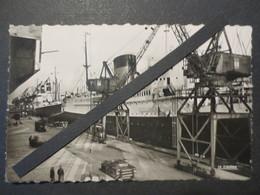 76 - Le Havre - Carte Photo Dentelée - Le Paquebot De Grasse Au Quai Joannès Couvert - Cliché Fernez - La Cigogne -TBE - - Le Havre