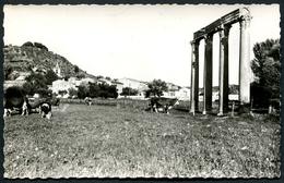 RIEZ - Colonnes Romaines - Phot. Vassal - Voir 2 Scans - France