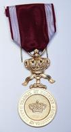Médaille Civile_Ordre De La Couronne_01 - Professionals / Firms