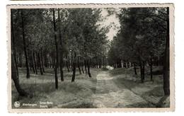 Keerbergen - Sous-Bois - Circulée En 1942 - Edit. Au Petit Bruxelles -  2 Scans - Keerbergen
