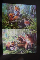 Fox Tribe - Modern Belorussian Postcard - 3 PCs Lot - Animaux & Faune