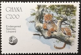 Ghana  1992 Anniversaries And Events Leopard Endangered Species - Ghana (1957-...)