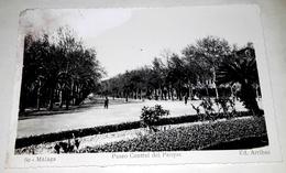 Old Postcard - Malaga Paseo Del Parque Central / Editions Arribas, No. 60 / Not Circulated - Málaga