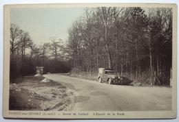 ROUTE DE CORBEIL - L'ENTRÉE DE LA FORÊT - QUINCY SOUS SÉNART - France