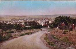 FERRYVILLE VUE GENERALE PRISE DE SIDI YAHIA (dil414) - Tunisia