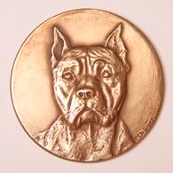 Médaille_bronze_ Américan Staff_club Kenneliste Houdinois - Belgium