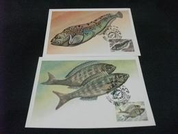 PESCE FISH  MAXIMUM 5 CARTOLINE FRANCOBOLLO RUSSIA CCCP - Pesci E Crostacei